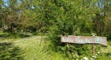 Medolla, all'area ecologica di San Matteo scuola in natura, attività culturali e salvaguardia dell'ambiente